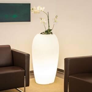 DEGARDO Lampa Storus V vysaditeľná biela priesvitná