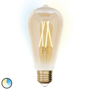 iDual iDual LED žiarovka E27 9W ST64 rozšírenie