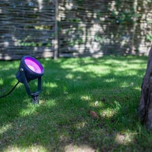 Eco-Light LED hrot do zeme Mini Leto, RGBW smart ovládanie