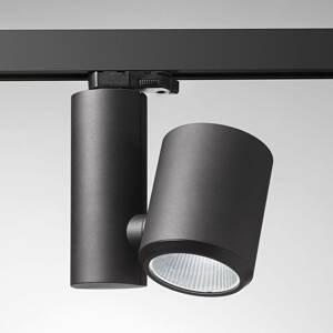 Egger Licht Čierne koľajnicové LED svetlo Kent Meat 38°