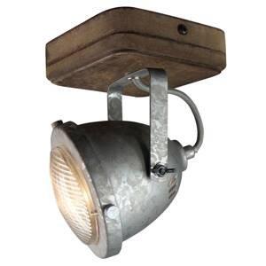 Freelight Svietidlo Woody, galvanicky pokovované 1-plameňové