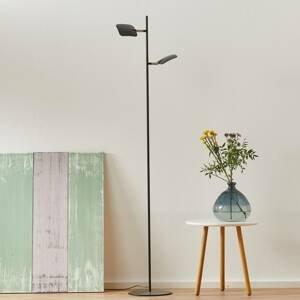 Freelight Stojaca LED lampa Raggio, 2-plameňová, čierna
