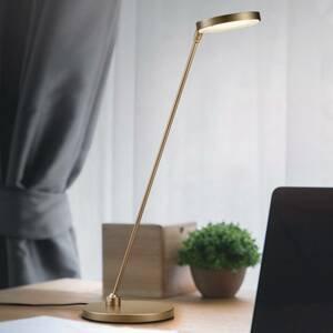 Knapstein Stolná LED lampa Thea-T, bronz