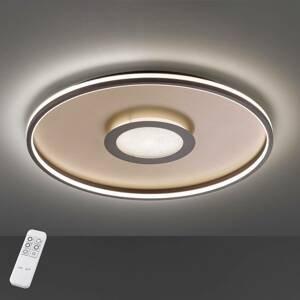FISCHER & HONSEL Stropné LED svietidlo Bug, okrúhle, hrdza 60cm