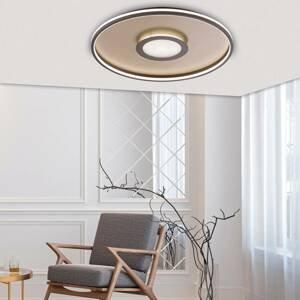 FISCHER & HONSEL Stropné LED svietidlo Bug, okrúhle, hrdza 81cm