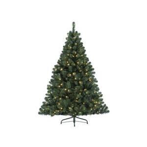 Kaemingk LED strom Imperial do interiéru, zelený, 120cm