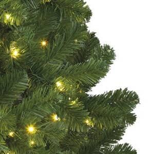 Kaemingk LED strom Imperial do interiéru, zelený, 210cm