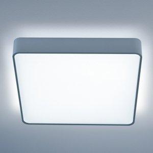Lightnet Štvorcové stropné LED Caleo-X2 uni biela 63 cm