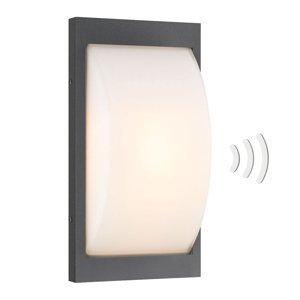 LCD Vonkajšie nástenné LED svietidlo 069LEDSEN grafit