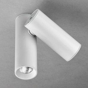 Milan Milan Tub - LED stropná lampa, dve svetlá, biela