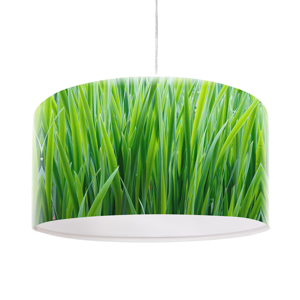 Maco Design Závesná lampa Flip s foto potlačou steblo trávy
