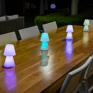 NEWGARDEN Newgarden Lola 20 stolná LED lampa, batéria