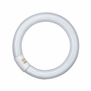 OSRAM G10q 40W 840 Lumilux T9C žiarivkový prstenec