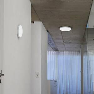 LEDVANCE Ledvance Planon Frameless Round LED panel Ø 30cm