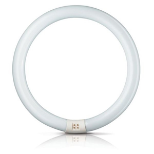 Philips G10q 32W 865 žiarivkový prst. Master Circular TL-E