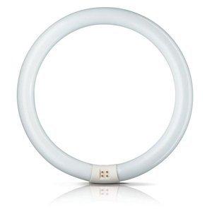 Philips G10q 22W 840 žiarivkový prst. Master Circular TL-E