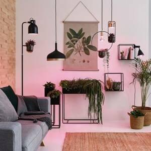 Paulmann Paulmann botanická LED lampa GU10 GrowGreen 3,5W