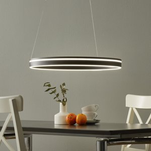 Q-SMART-HOME Paul Neuhaus Q-VITO závesné LED 59cm antracit