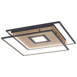 Q-SMART-HOME Paul Neuhaus Q-AMIRA stropné LED svietidlo, zlaté