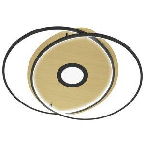 Q-SMART-HOME Paul Neuhaus Q-AMIRA stropné LED ovál, čierne