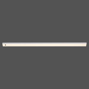 Paul Neuhaus Podhľadové LED svietidlo Amon, stmievateľné