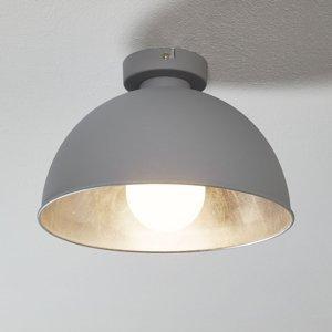 Reality Leuchten Kovové stropné svietidlo Jimmy sivé/striebro