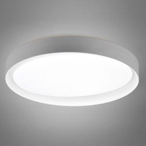 Reality Leuchten Stropné LED svetlo Zeta tunable white sivé/biele