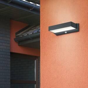 Trio Lighting Vonkajšie nástenné LED Cuando s detektorom pohybu