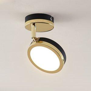 Lindby Lindby Alsani – stropné LED svietidlo 1-plameňové